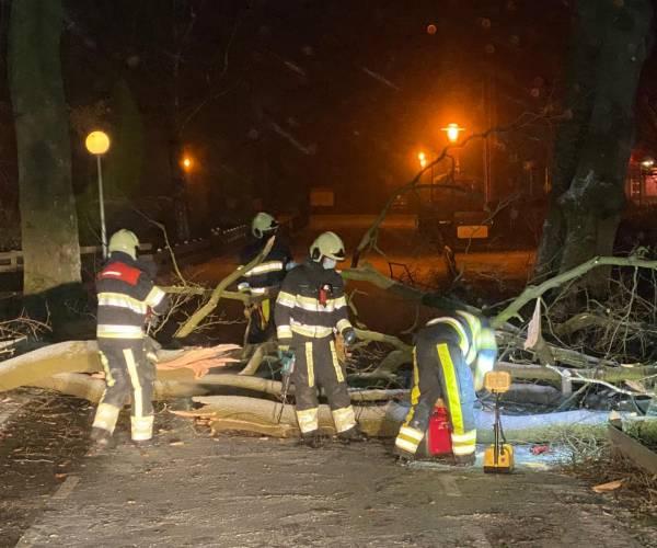 Brandweer haalt grote tak van de weg in Oranjewoud