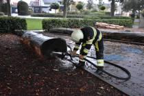 Brandweer blust boomstam op plein Van Maasdijkschool