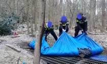 Gestolen hekken terug bij eigenaar na ontdekken ondergrondse hut in Oranjewoud