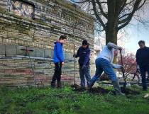 Doneer een boom aan de Le Roy tuin in Heerenveen-Midden
