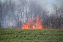 Brandweer Heerenveen opgeroepen voor rietbrand in Delfstrahuizen