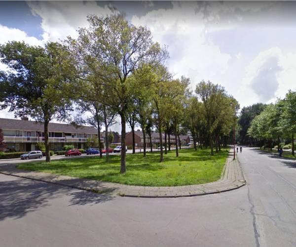 Gemeente Heerenveen en BUITENgewoon De Greiden starten 'Walk in the park' project