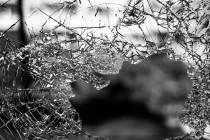 PvdA Heerenveen stelt vragen over vernielingen in Heerenveen-Noord