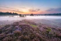 Avon(d)tuurlijke wandelexcursies bij It Fryske Gea